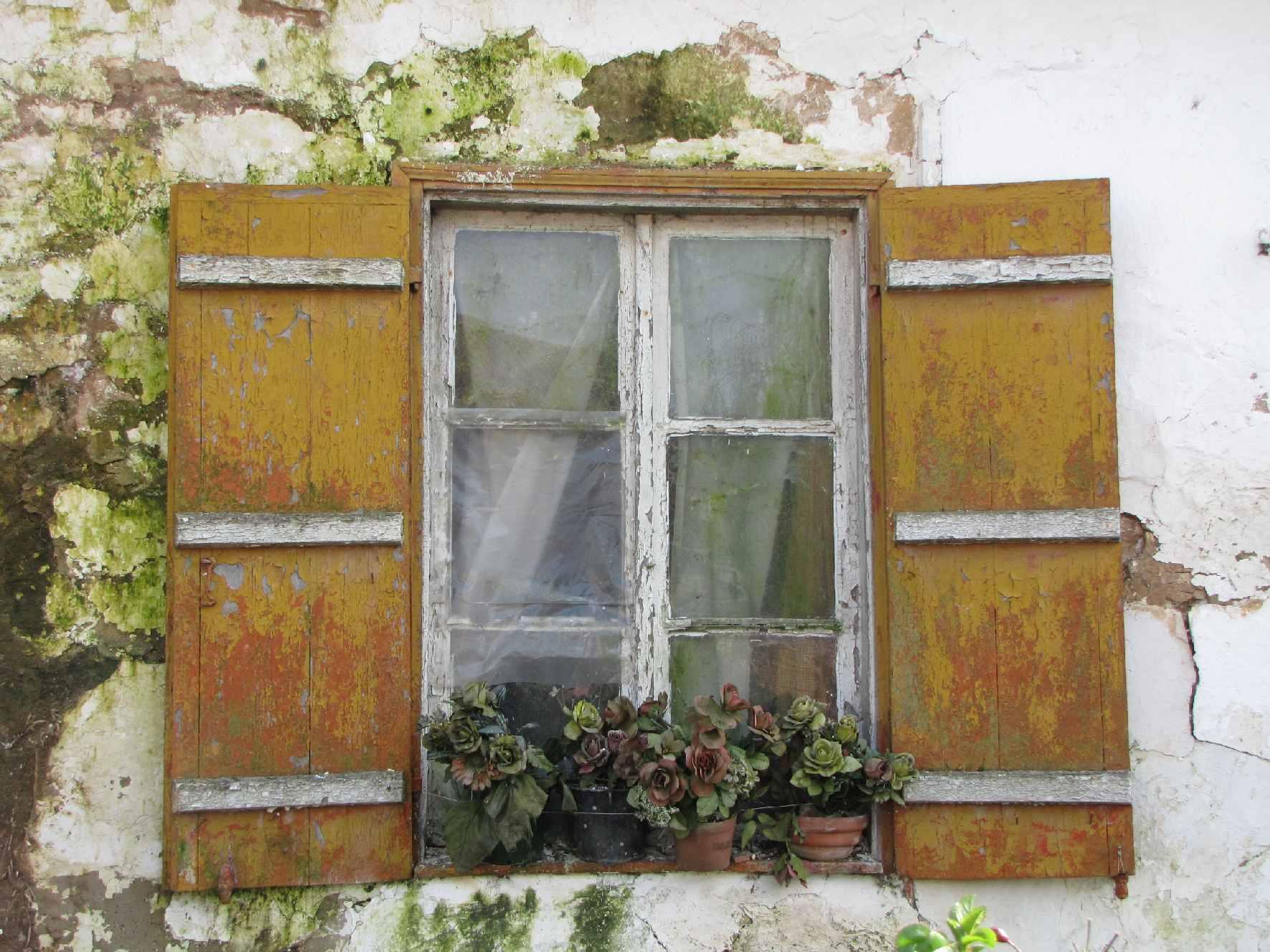 LE charme des fermettes rurales à Alette